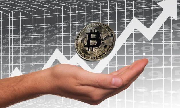Keine Angst — Cardano Gründer sieht Bitcoin langfristig bei 100.000 US-Dollar