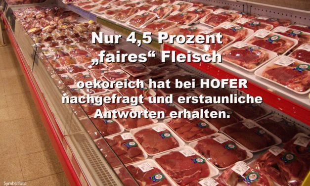 """HOFER & co: Nur 4,5 Prozent """"faires"""" Fleisch im Supermarkt-Regal"""